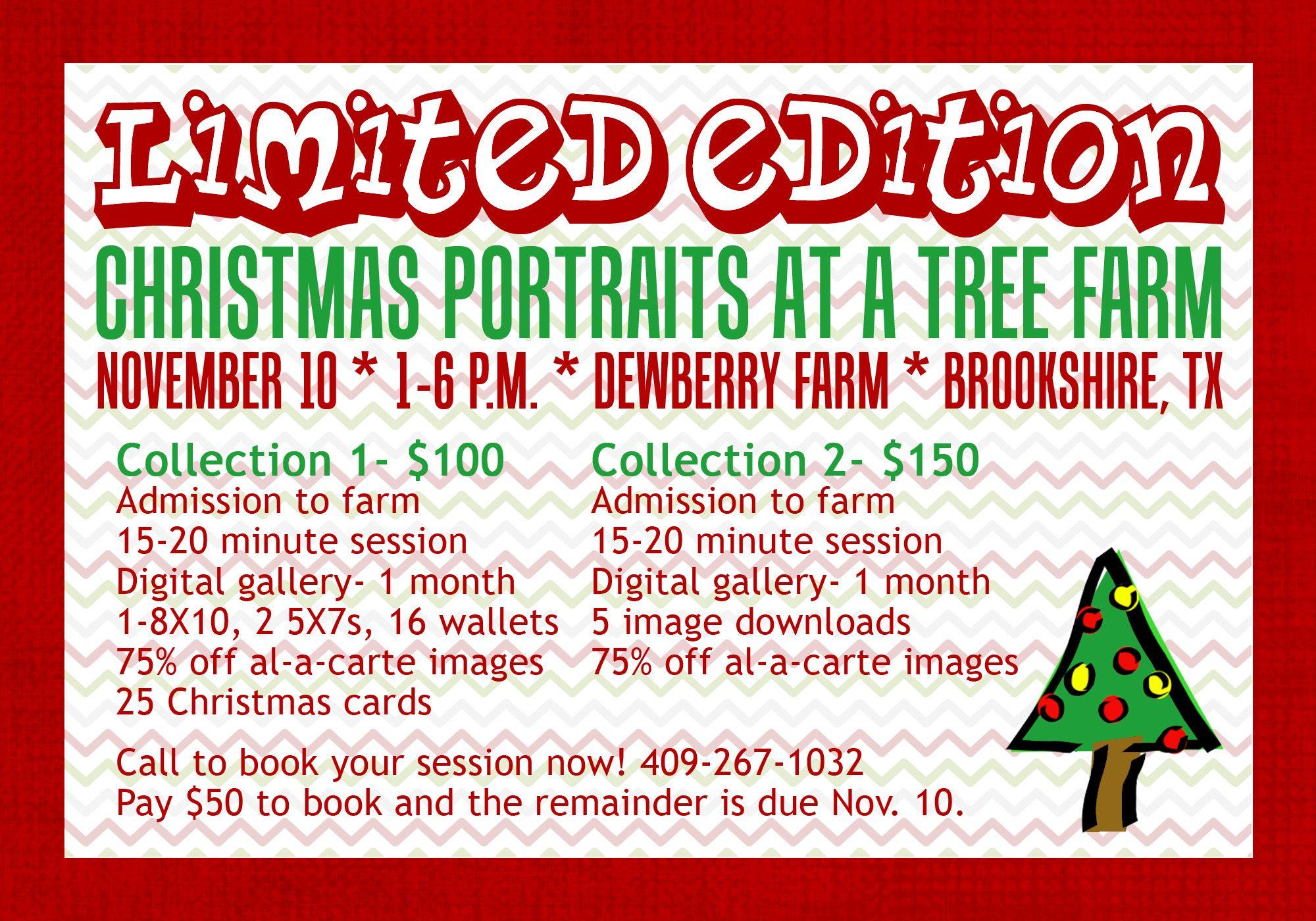 Www Nickievansphotography Com Houston Photographer Katy Tx Photographer Christmas Mini Session Christmas Tree Farm Dewberry Farm Ch Wonderland