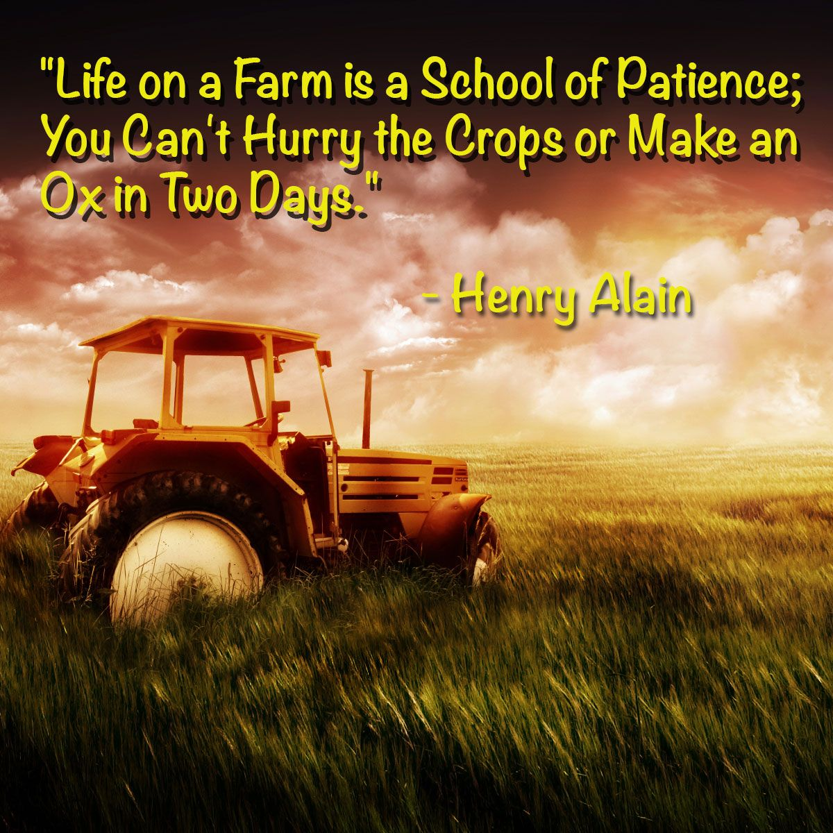 Ag Quote Tractor  Inspirations  Pinterest  Tractor Agriculture Quotes And .