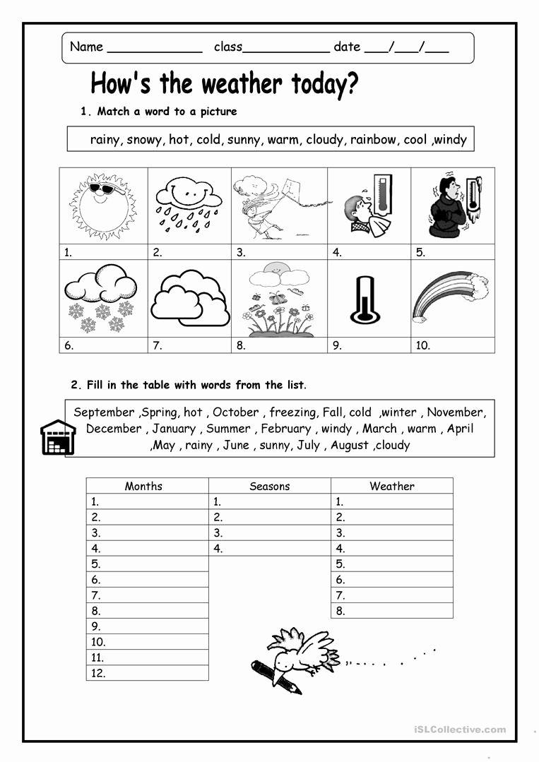 Worksheet For Kindergarten Weather Weather Worksheets Seasons Worksheets Kindergarten Worksheets [ 1079 x 763 Pixel ]