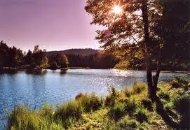 Lac de blanchemer, Vosges, France.
