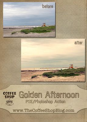 Golden afternoon - Free CoffeeShop Actions