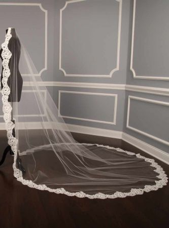 Beautiful lace veil<3