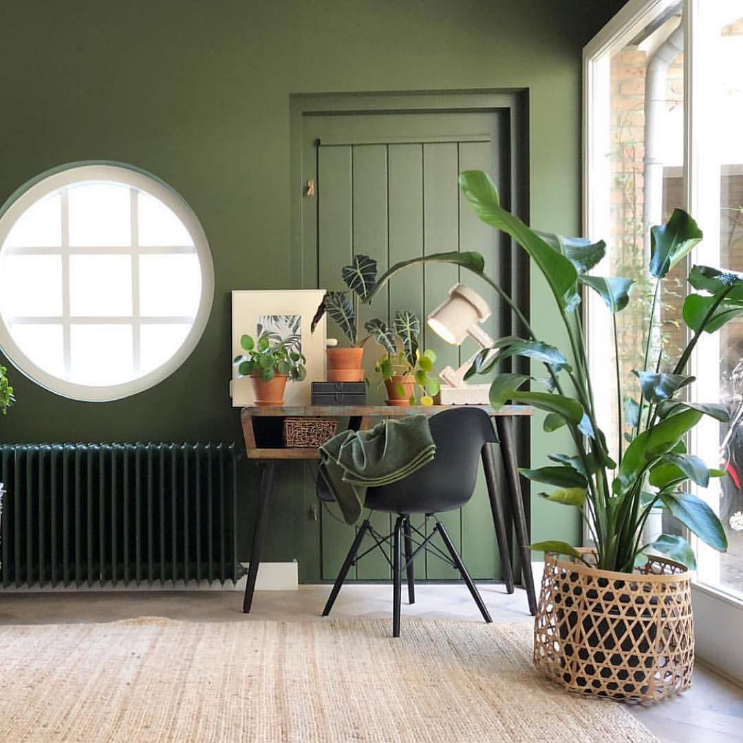 Have A Great Saturday Everybody I Am Simply Amazed By This Green Home Of S O N I A D What A Beauty Wandfarbe Wohnzimmer Wandfarbe Grün Wohnzimmerfarbe