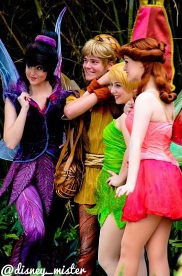 Vidia, Terrence, Tink, and Rosetta