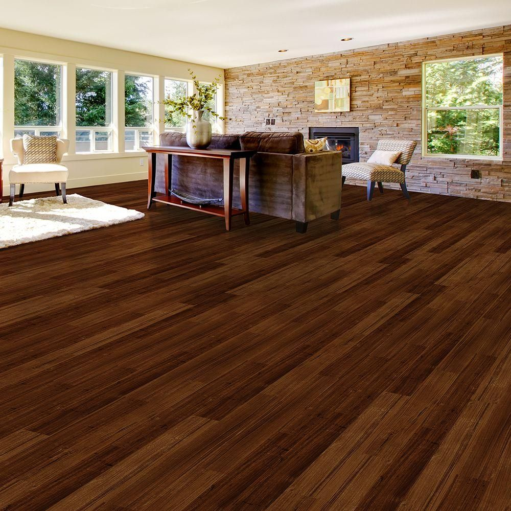 TrafficMASTER Take Home Sample Allure Plus Spotted Gum