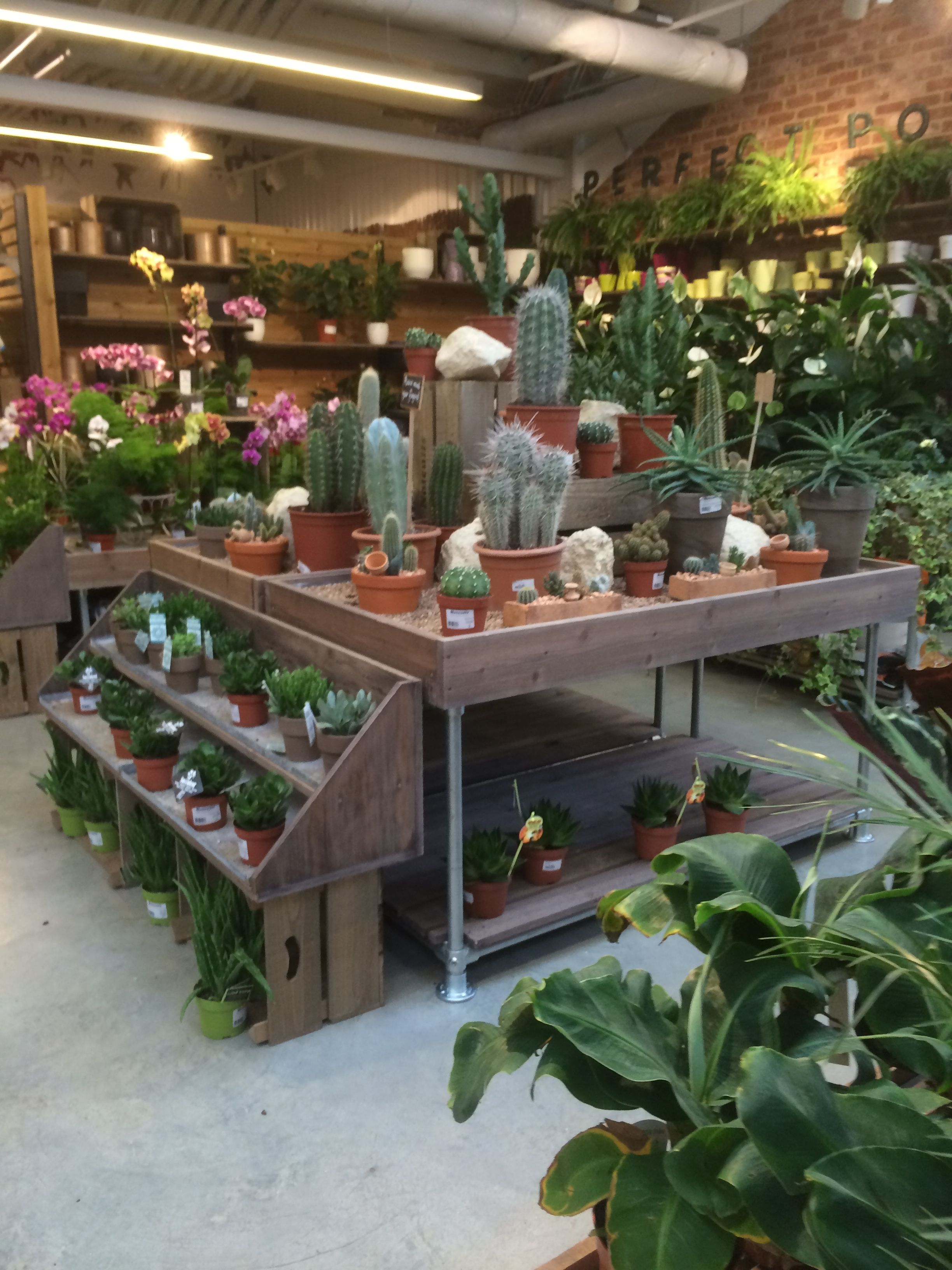 garden center design nursery flower shop florist