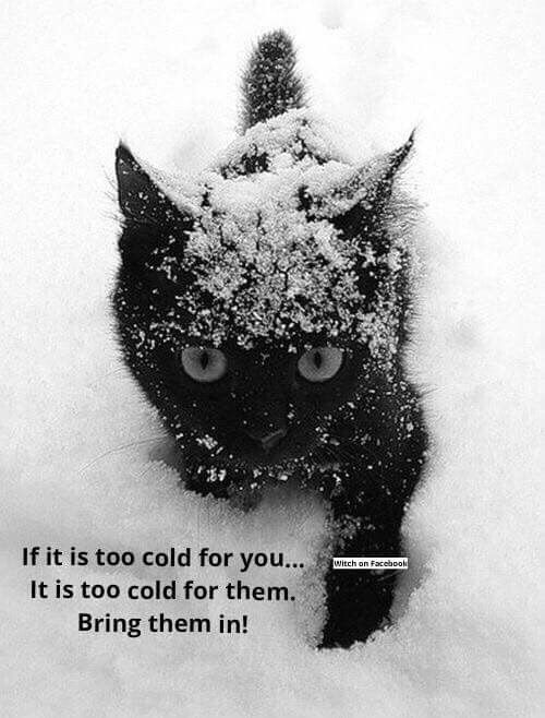 Keep them safe and warm
