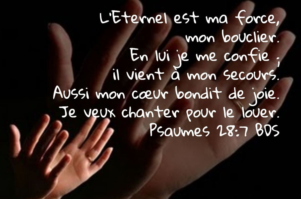 L'Eternel est ma force, | mon bouclier. En lui je me confie ; | il vient à  mon secours. Aussi mon cœur bondit de joie. Je veux chanter pour le … |  Bible, Faith, Psa