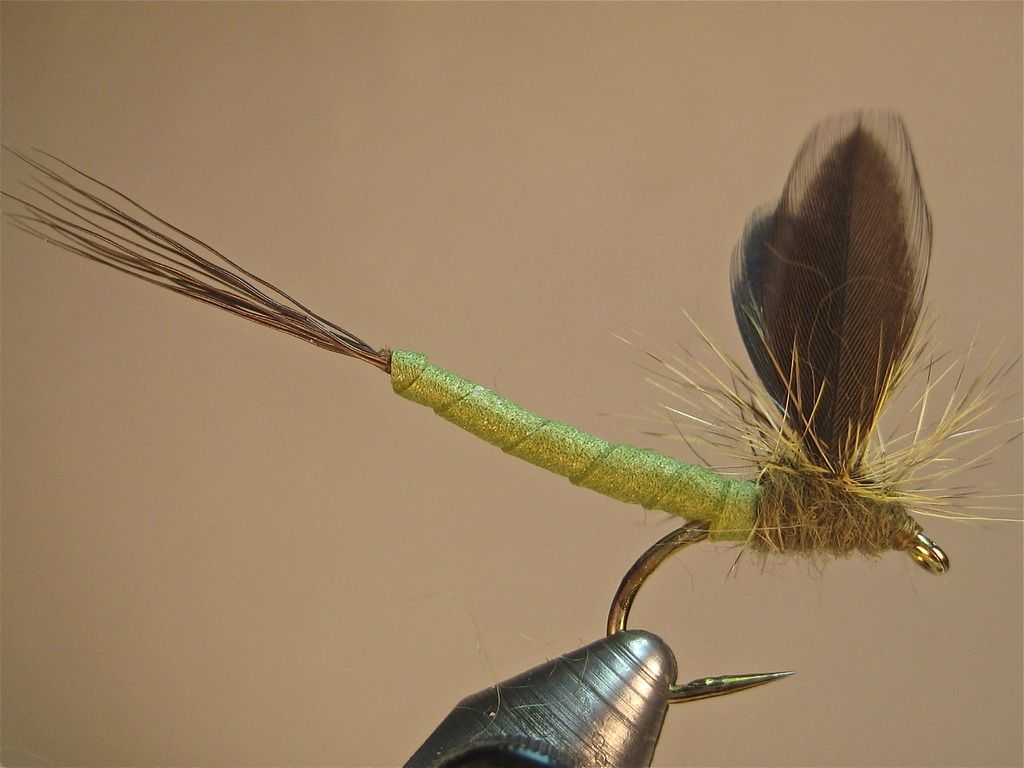 Carnage Drake (gallows variation) SBS | Washington Fly Fishing