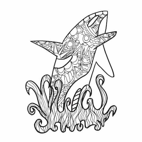 ORCA Free Coloring Page! — Stevie Doodles in 2020