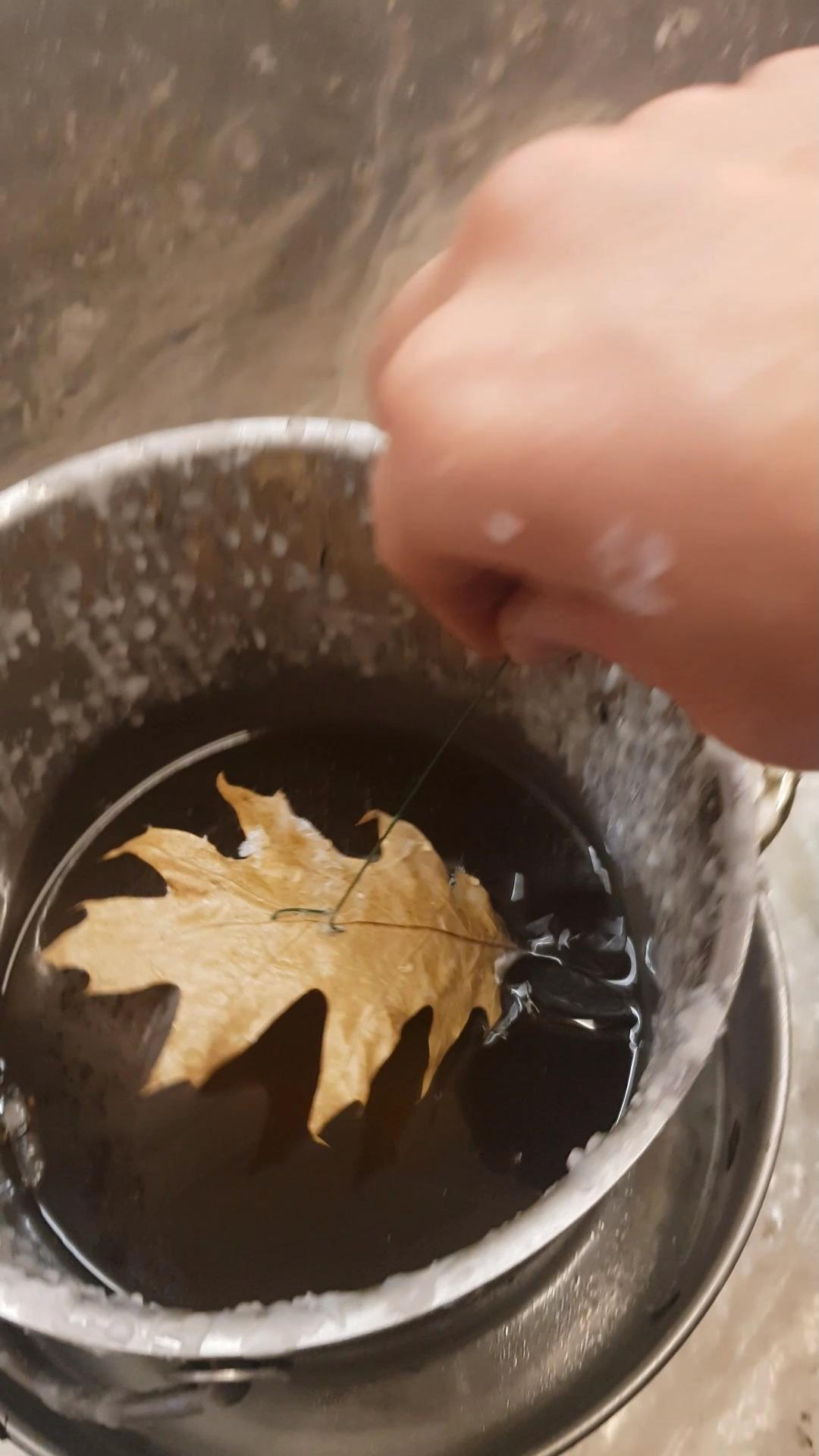 Herbst Blatt mit Wachs überziehen #dekoherbst