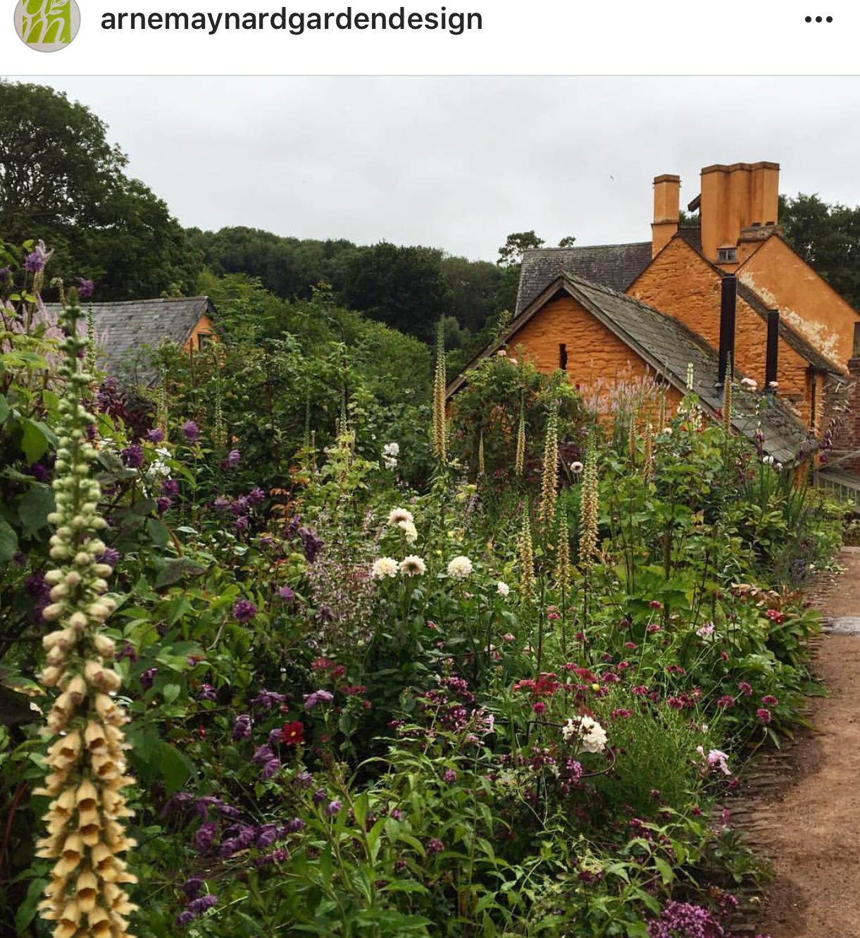 Foxgloves Arne Maynard Garden Design Instagram Garden