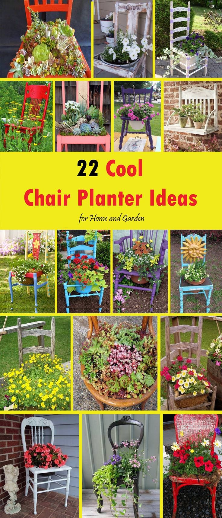 What Do You Do With An Old Or Simply Unnecessary Chairs? You Will Throw  Them. But Wait! You Can Grow Plants In Them And Here In This Article You  Will 22 ...