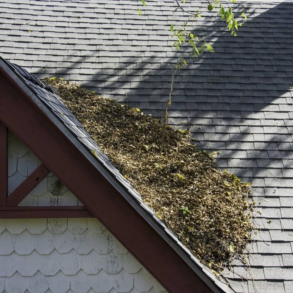 Roof Cleaning Service Vancouver Wa Northwest Roof Maintenance Roof Maintenance Roof Cleaning Cleaning Service