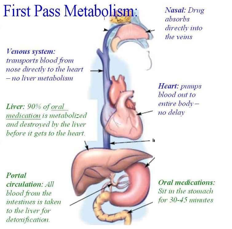 Overview Of Intranasal Medication Delivery Pharmacology Nursing Nursing Videos Medical Prescription