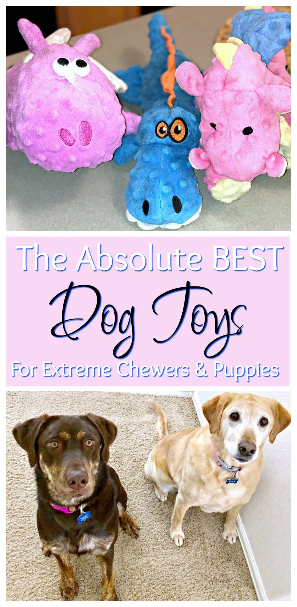Dog toys for extreme chewers diy dog toys cute dog toys