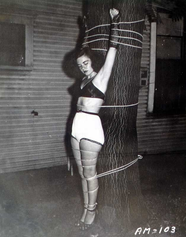 That lingerie Shannon 1964 ca bdsm Ball her
