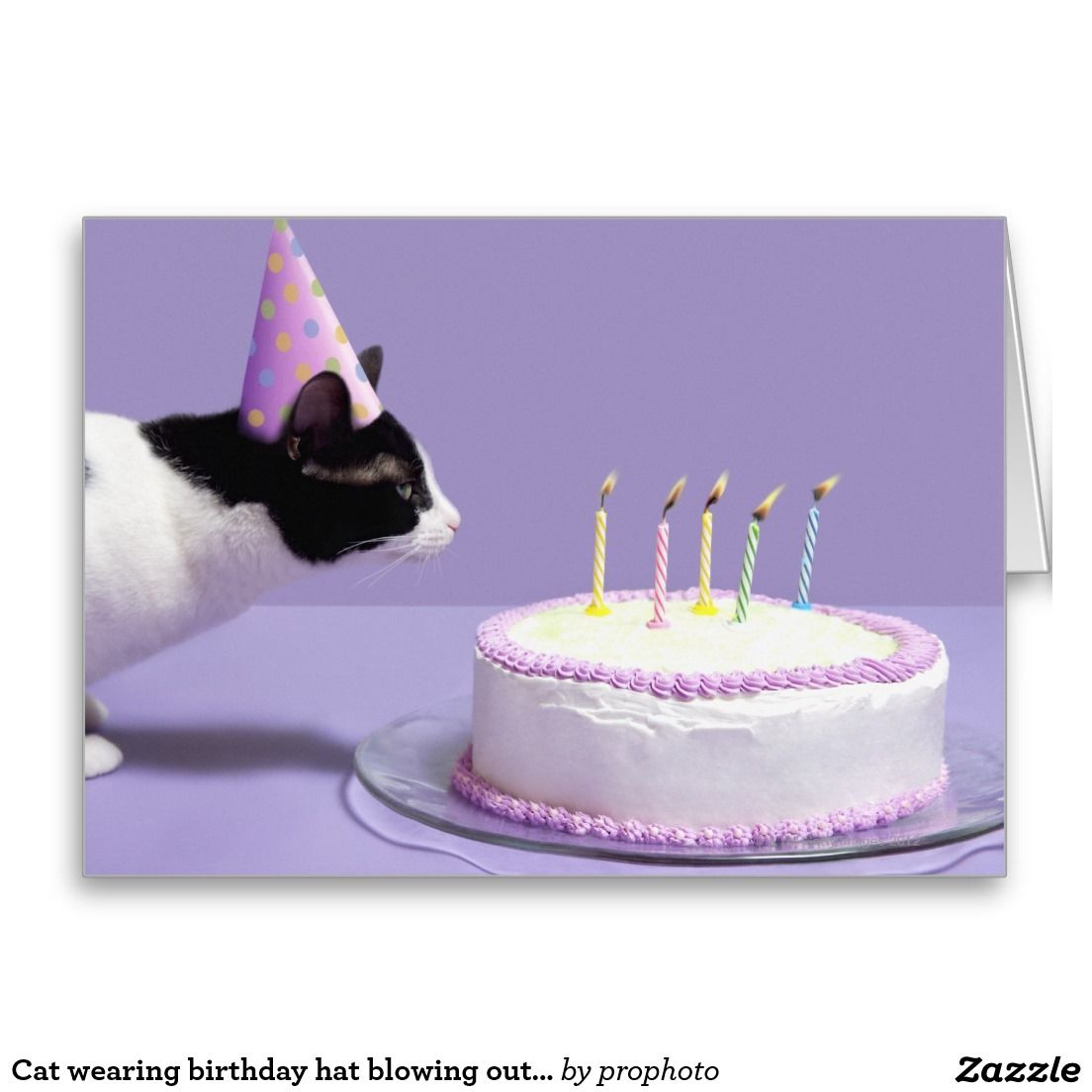 Cat wearing birthday hat blowing out candles card zazzle