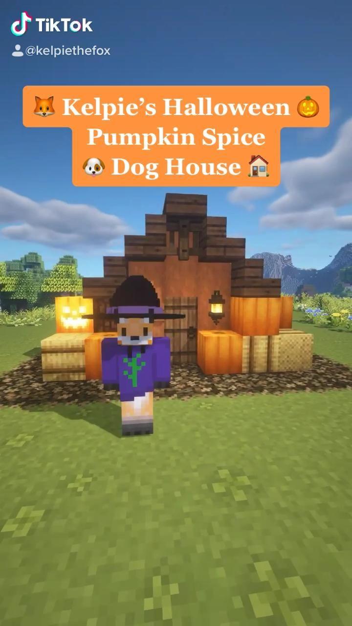 Kelpie s Halloween 🎃🥧Pumpkin Spice Dog House