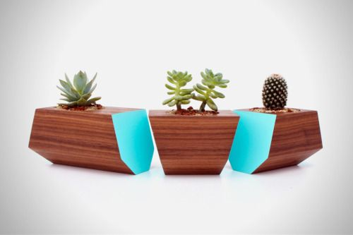 polyhead:  Boxcar Succulent Planters http://www.direktconcept.com/2013/09/27/boxcar-succulent-planters/