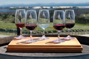 Kumeu wineries just north of Auckland
