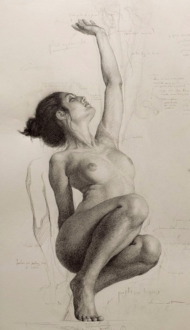 Shane wolf stooping and reaching nude female figure study anatomy drawing nsfw