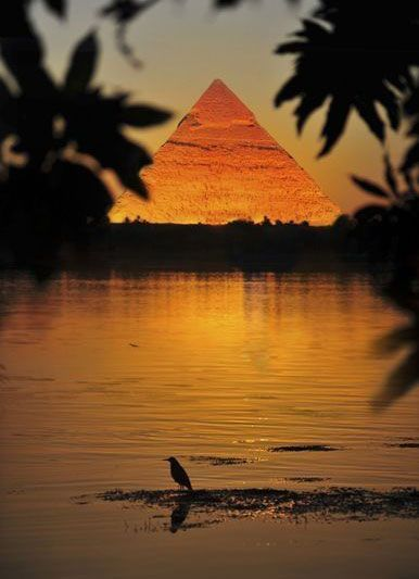 The river Nile ~ Cairo ~ Egypt