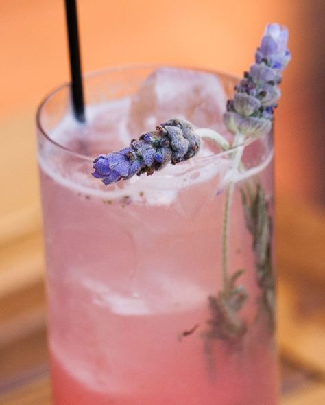 Gin Cocktail Recipes You Need To Make At Home ASAP #bestgincocktails
