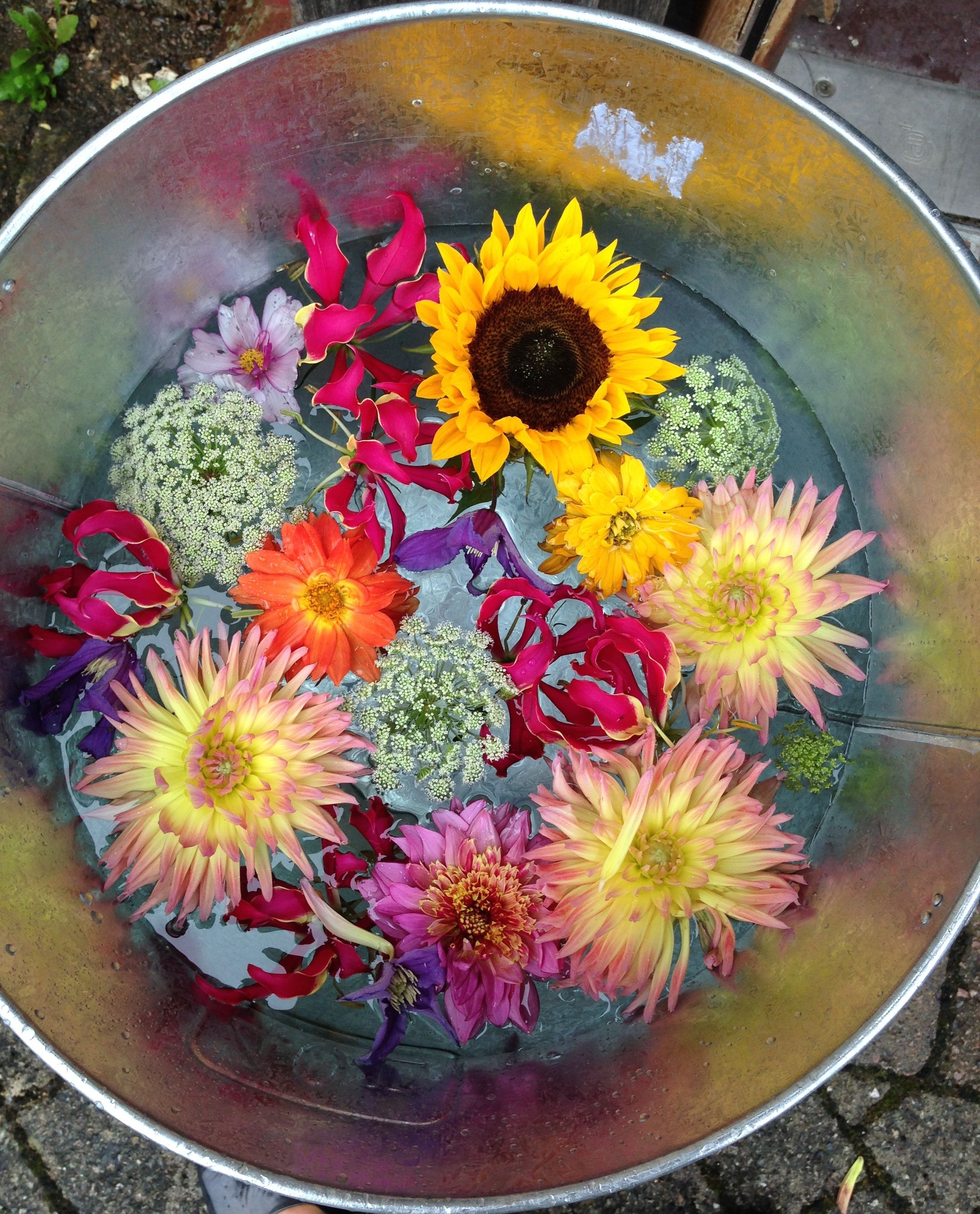 Wedding decor images zimbabwe  Foxgloves and Roses Floral Design floating flowers  Nisha and