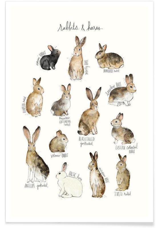 Rabbits And Hares En Art Print Par Amy Hamilton Juniqe 12 90