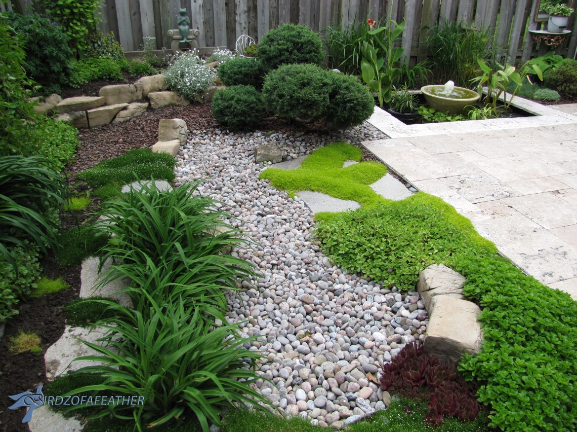 Low maintenance gardening part 1 dry creek bed dry for Low maintenance plants for garden beds