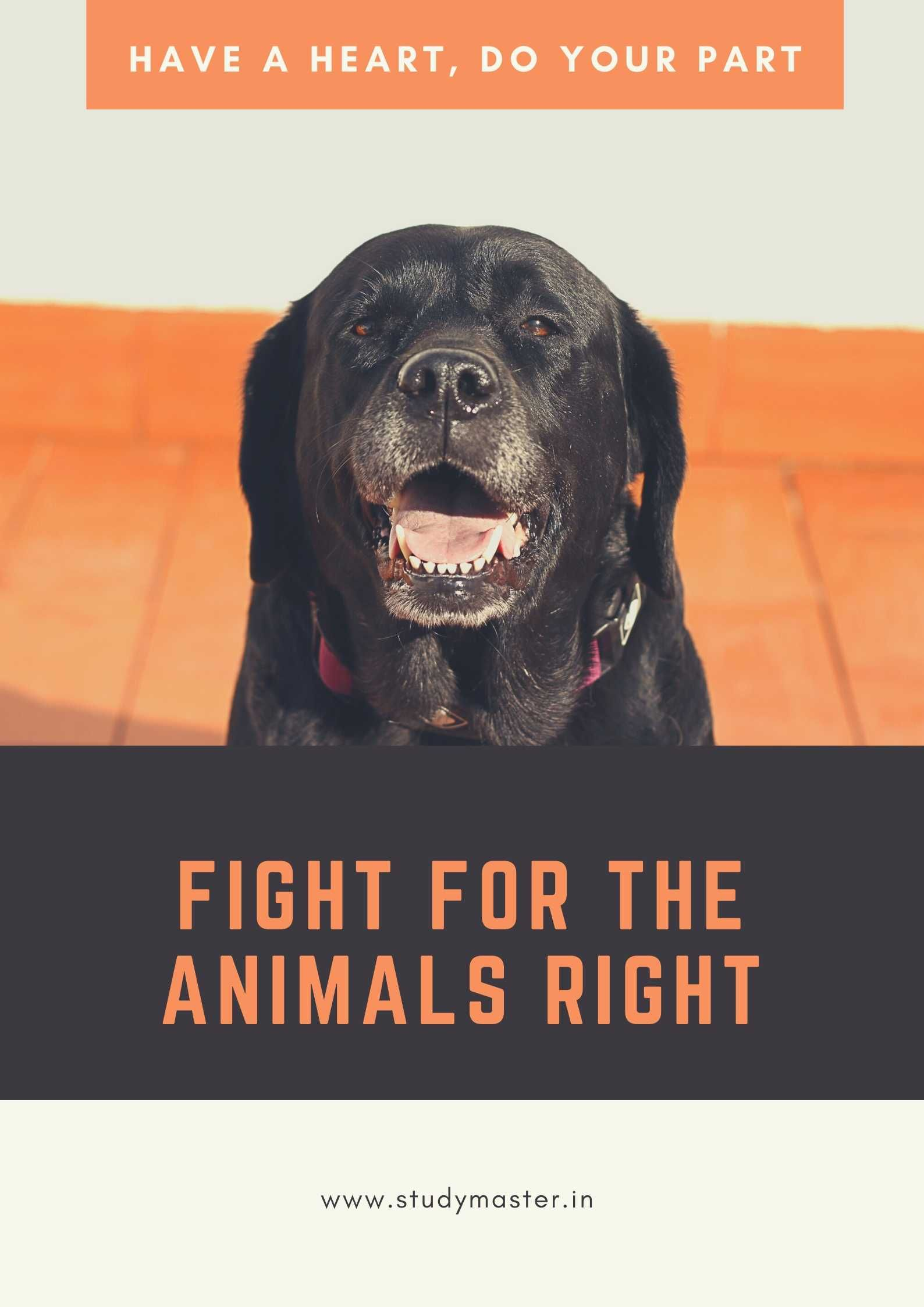 Save Animals Poster Best guard dogs, Pets, Animal posters