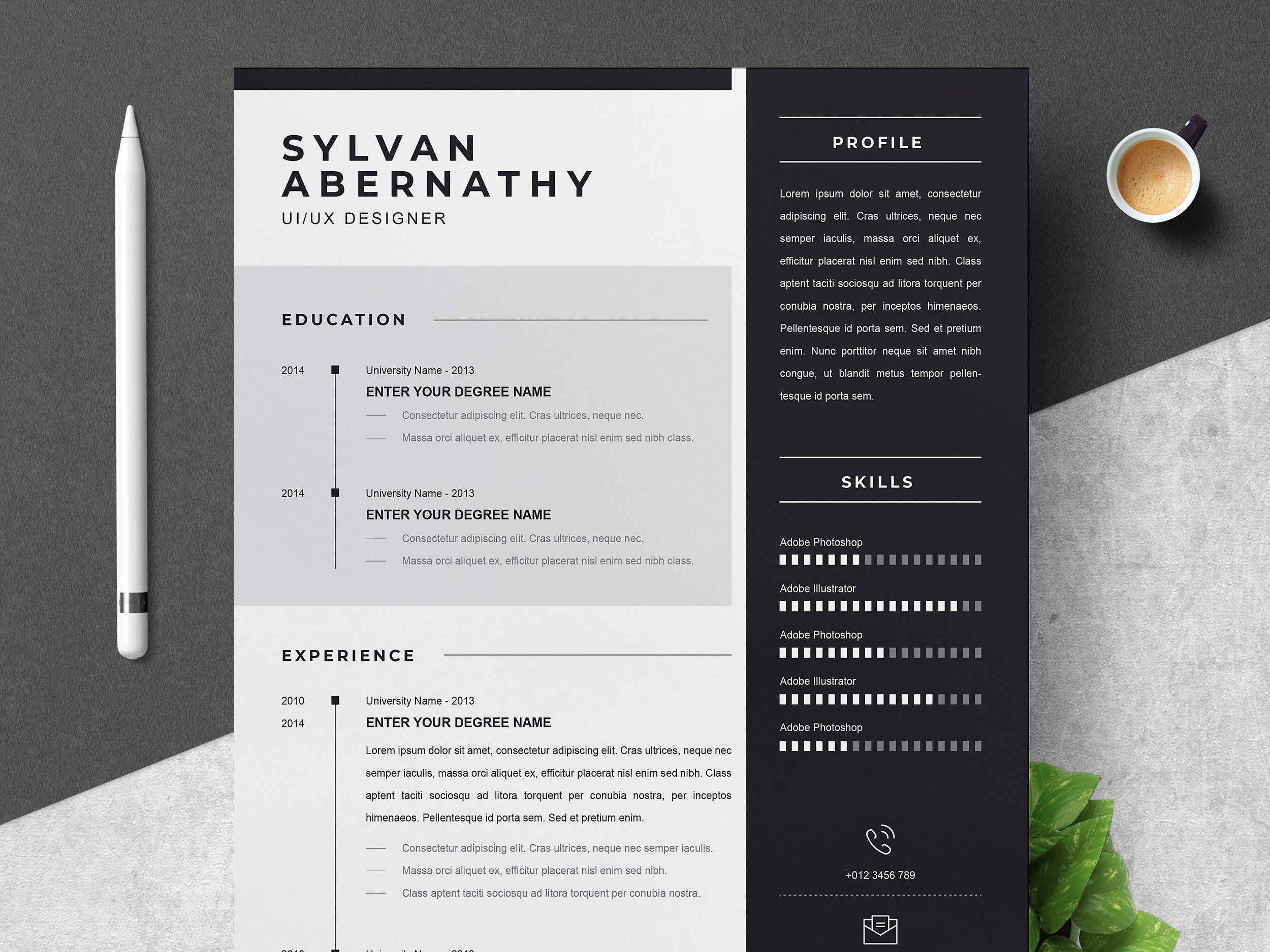 Professional resume cv template cv template