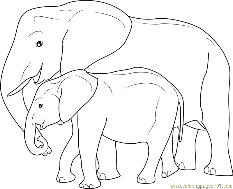 Mother And Baby Elephant Coloring Page Free Elephant Coloring Elephant Coloring Page Mother And Baby Elephant Baby Elephant