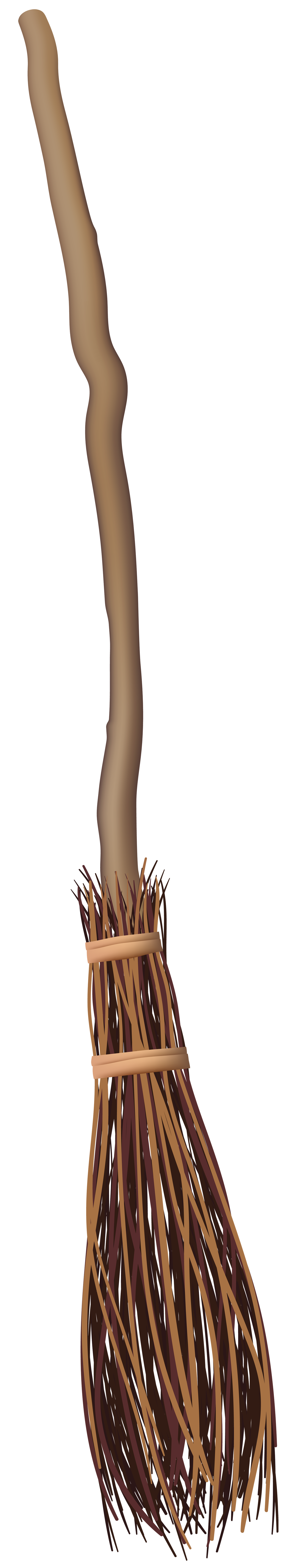 Witch broom png