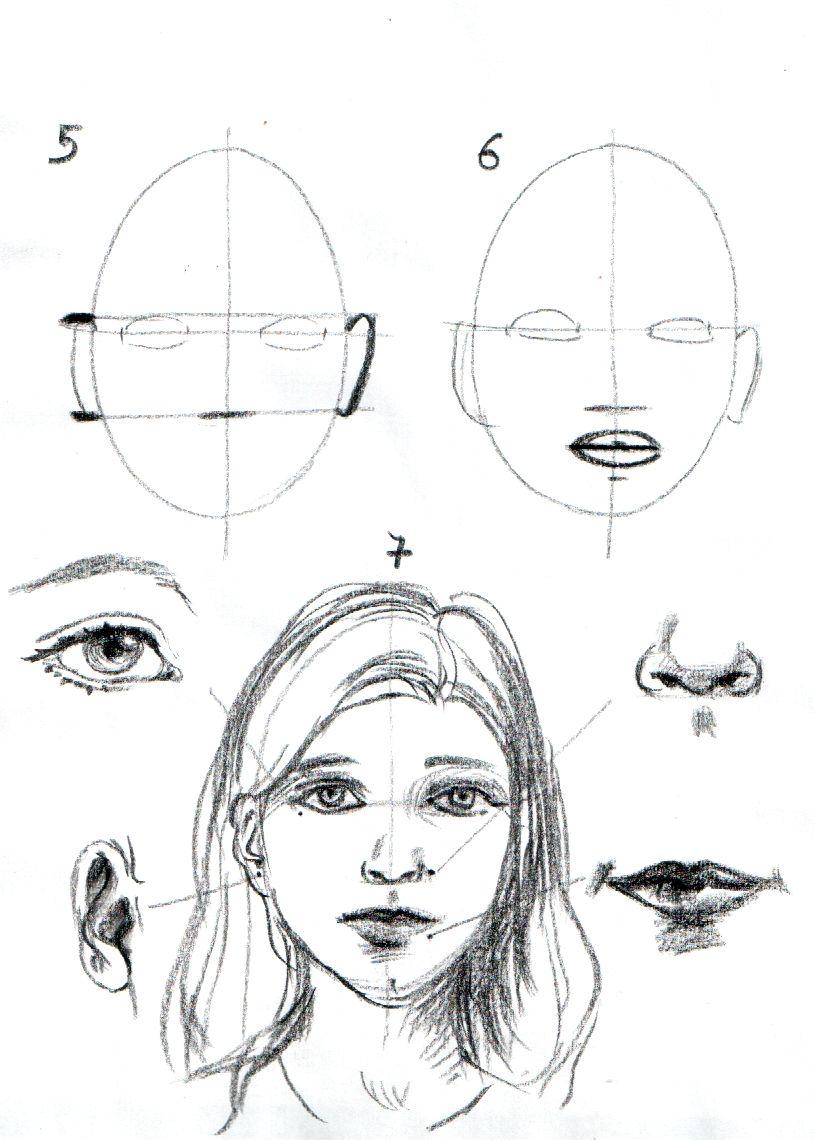 apprendre a dessiner un visage etape par etape dessins. Black Bedroom Furniture Sets. Home Design Ideas