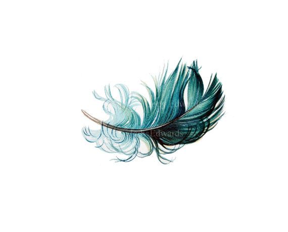 Floating Feather 5 watercolor study  Original Feather by jodyvanB, $46.00