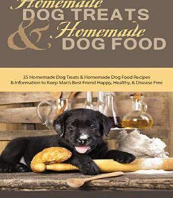 Homemade dog treats and homemade dog food pdf animals homemade dog treats and homemade dog food pdf forumfinder Images