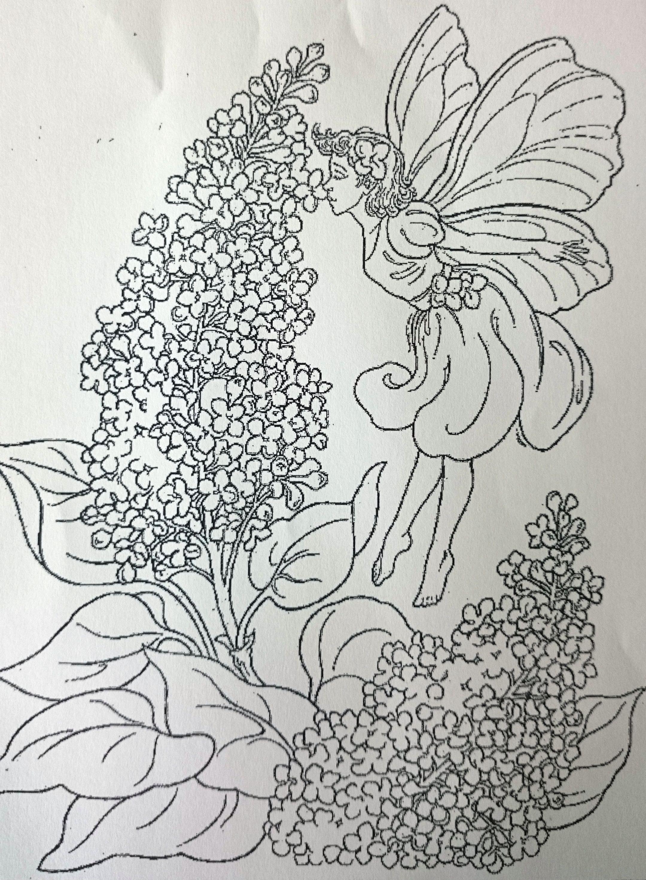 Vlinderstruik Bloemen Kleurplaten Kleurplaten Gratis Kleurplaten