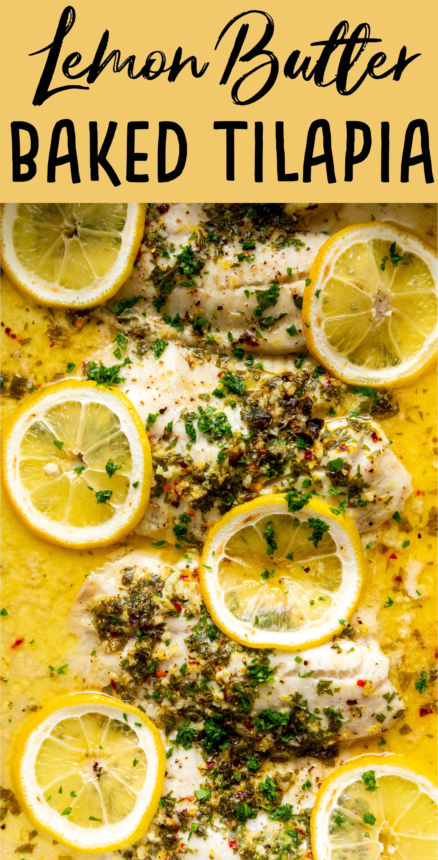 Lemon Butter Baked Tilapia Recipe Tilapia Recipes Easy Fish Recipes Healthy Baked Tilapia
