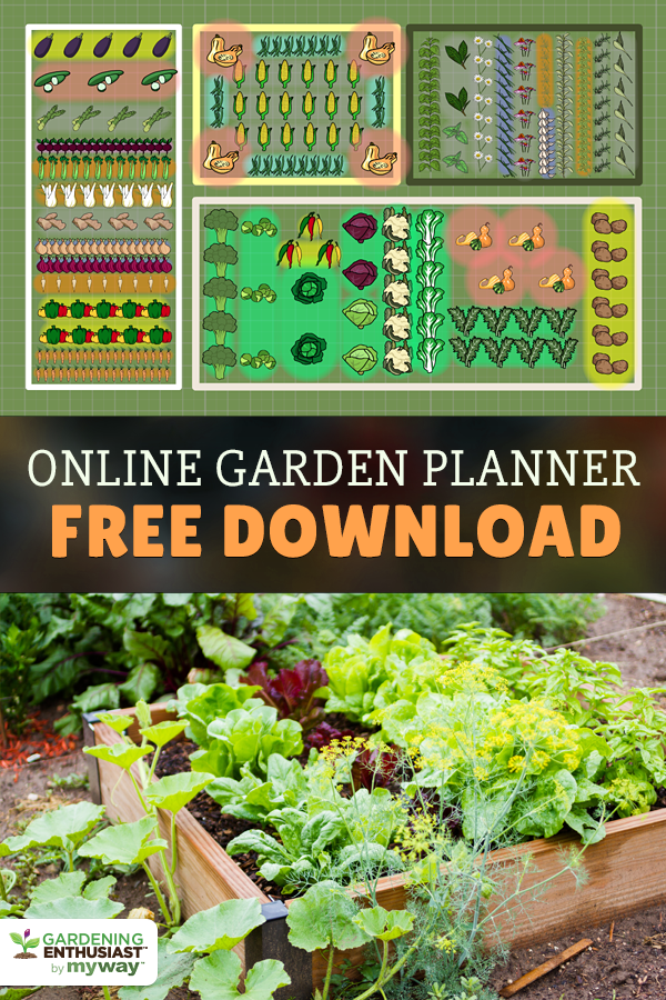 Plan Your Veggie Garden With Free Download Design Your Space To Grow A Healthy Beautiful Vegetable Gard Veggie Garden Garden Planner Vegetable Garden Planner