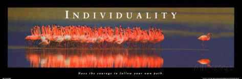 Individuality: Flamingos Posters - AllPosters.co.uk