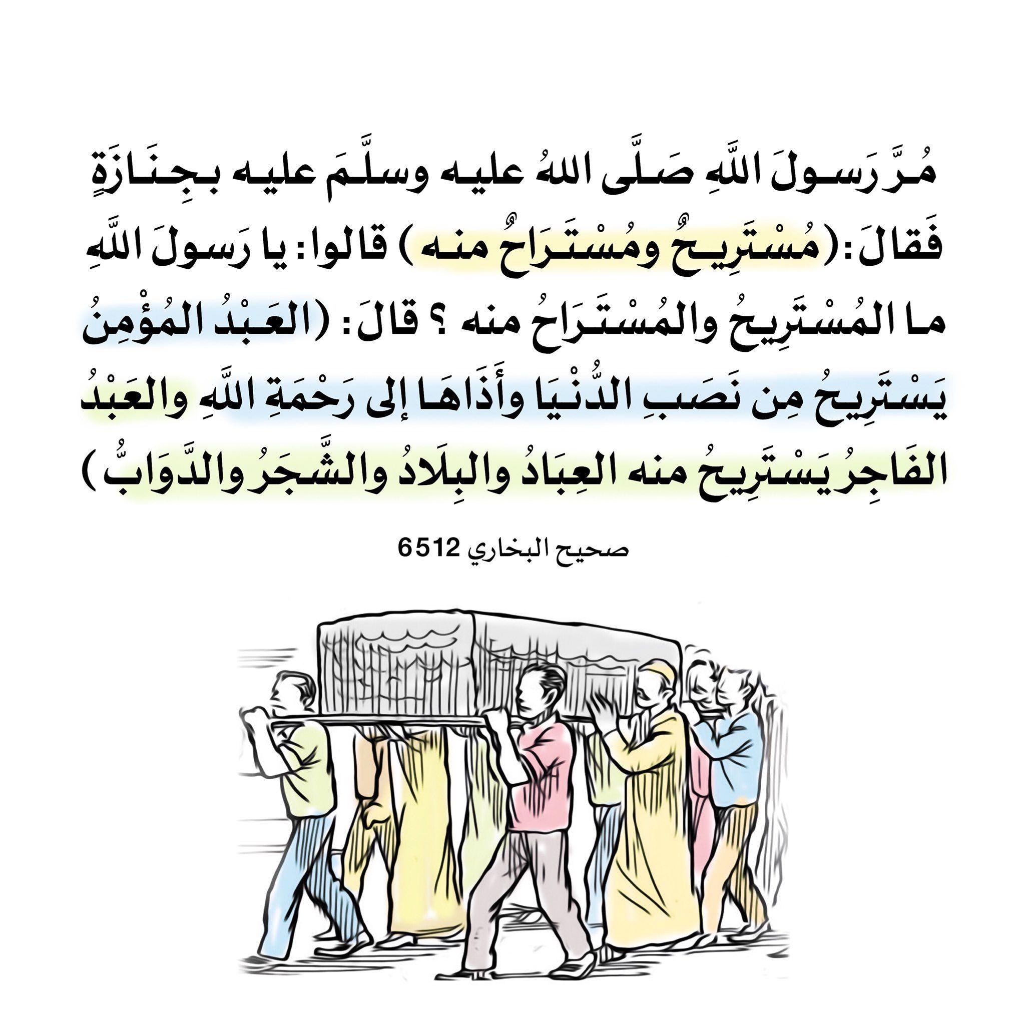 Pin De Korg Strong En Arabes