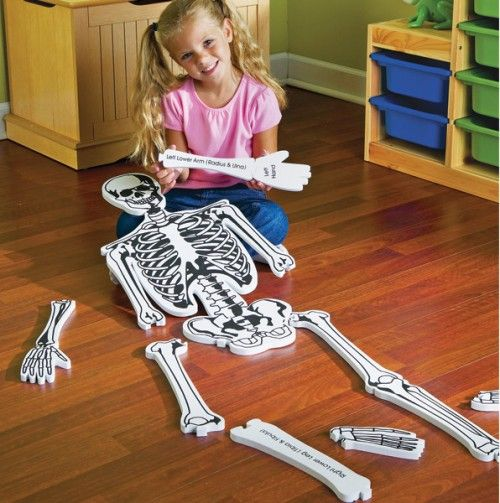 Skeleton Floor Puzzle Want Need Love Learning