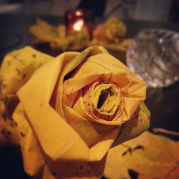 Ruusu vaahteranlehdistä