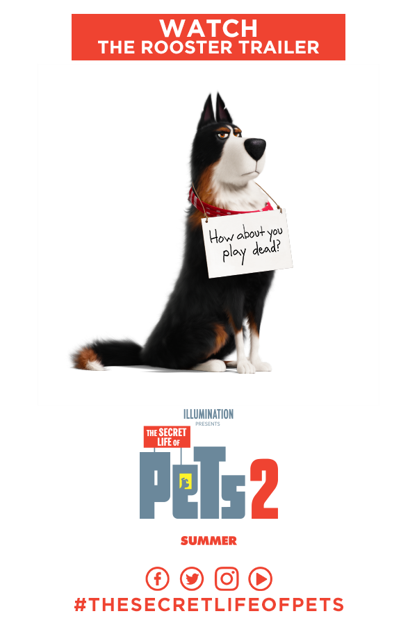 Welcoming Harrison Ford As Rooster As The Secret Life Of Pets 2