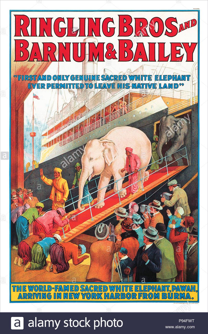 1927 U S Advertising Poster For Ringling Bros And Barnum Bailey Circuses Featuring The White Elephant In 2020 Vintage Circus Vintage Circus Posters Circus Poster