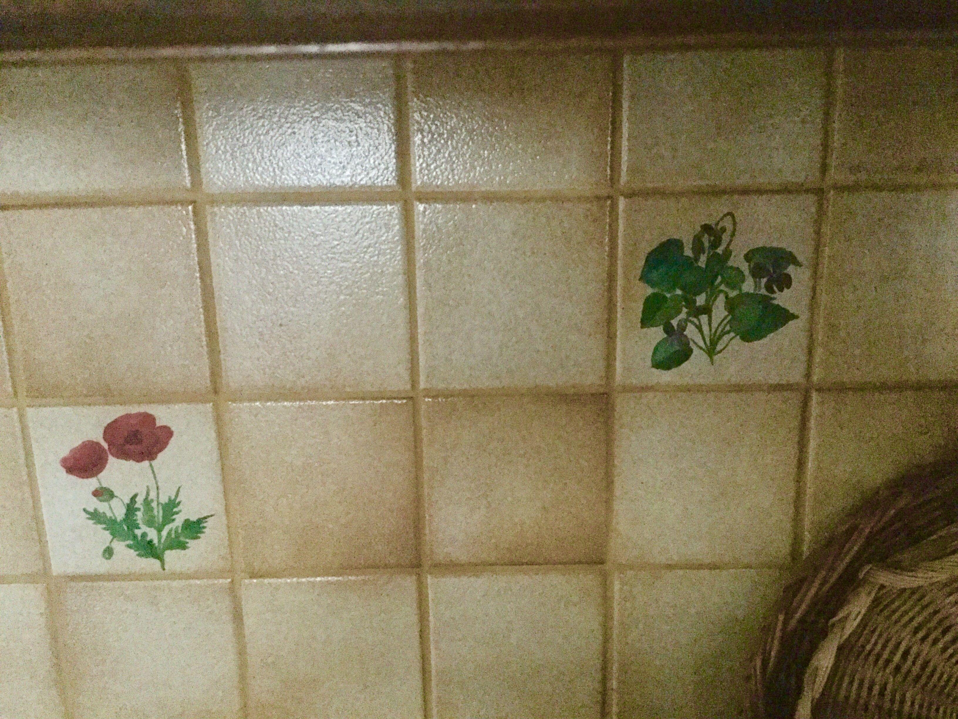 La cucina con pavimento dipinte a mano le piastrelle del pavimento