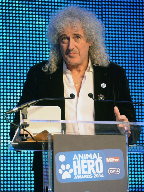 2014 Celebrity Supporter of the Year winner - Dr Brian May, CBE.