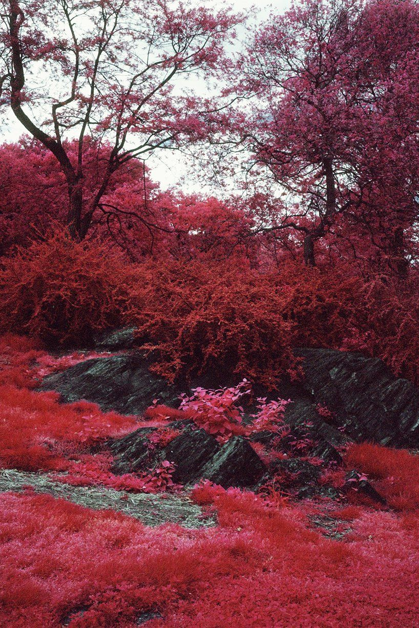 Infrared Photography By Vicente Munoz Captures Urbanization Vs Nature Rojo